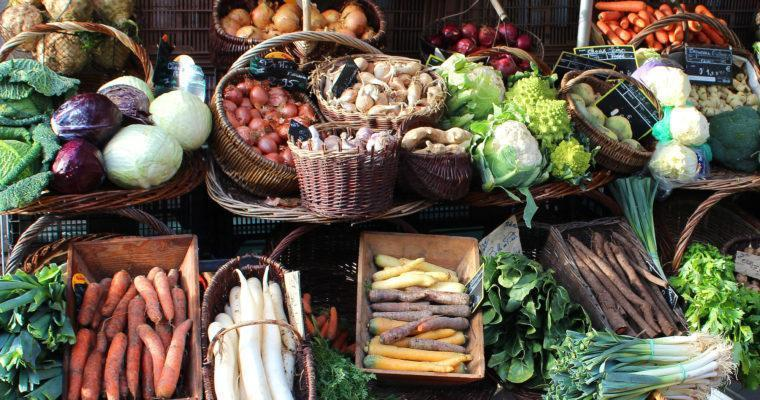Seasonal cuisine: healthy, delicious and sustainable