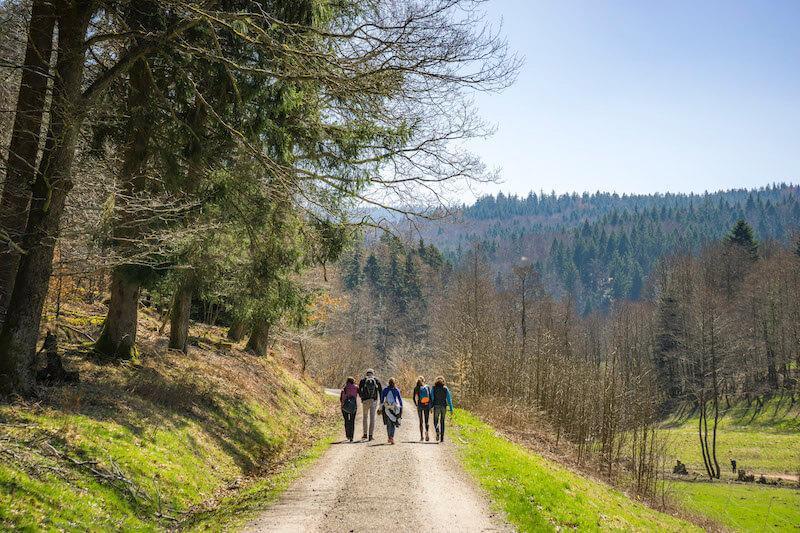 Hikers in Bad Herrenalb, Black Forest. © Tourismus GmbH Nördlicher Schwarzwald